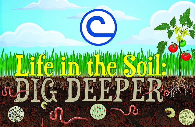 2019 Soil Stewardship Week Theme- Life in the Soil: Dig Deeper